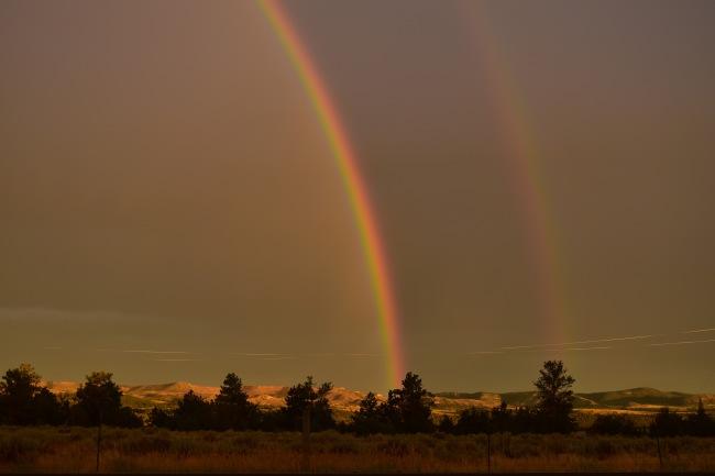 Glendo State Park WY_0372